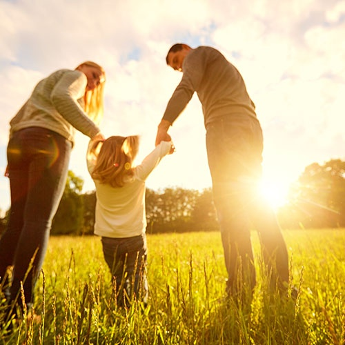 An image of a family in a field